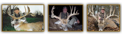 Enjoy Trophy Whitetail Deer Hunting Opportunities At Oak Creek Whitetail Ranch