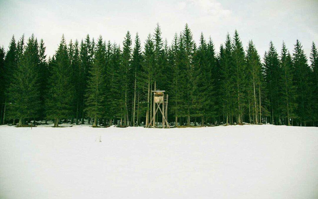 Ten Tips for Winter Hunts